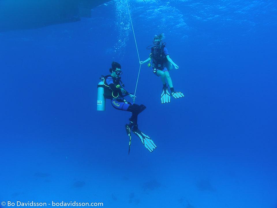 BD-051020-Hurghada-200449-Homo-sapiens.-Linnaeus.-1758-[Diver].jpg